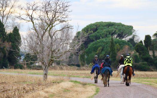 passeig a cavall Hipica Paguina