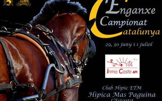 This year 2018, the Championship of Catalonia of Path to the Equestrian Mas Paguina of L'Estartit will be held. It will be a very interesting test where the best carriages of Catalonia will come. It will be worth the trouble to give it a look. You can not miss